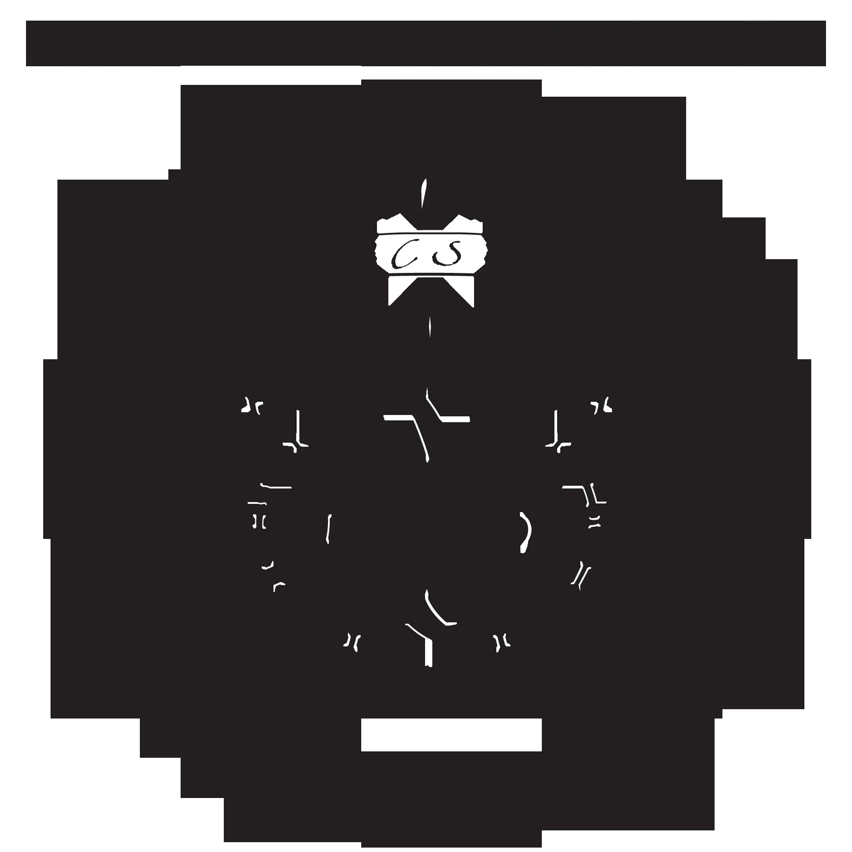 Copenhagen_Suborbitals_Logos_Combined